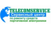 Telecomservice Electronic Systems